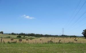 con la harley en la ruta hacia La Paoloma, Uruguay