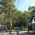 Plaza Mitre, Zárate