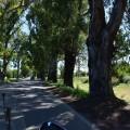Ruta 146 de Villa Mercedes a San Rafael