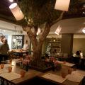 Restaurante Plantado, Montevideo